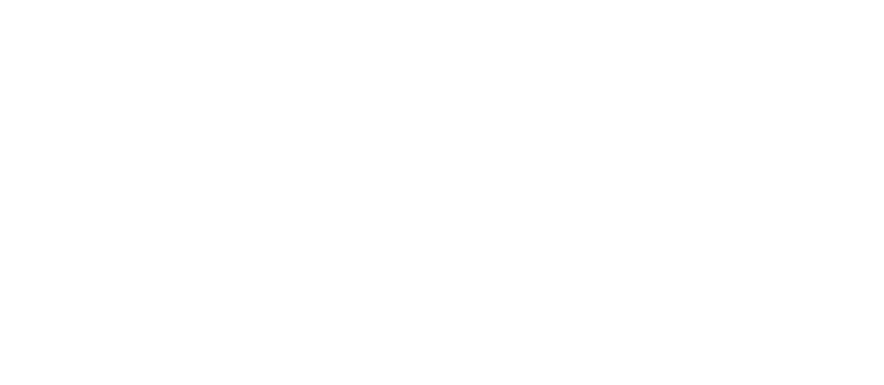 certified Women Owned Business through the Women's Business Enterprise National Council (WBENC)
